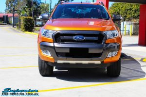 "Front on bonnet view of a Orange Ford PXII Ranger Dual Cab before fitment with a Rhino 4x4 Evolution 3D Winch Bar & Legendex 409 Stainless Steel 3"" Inch Exhaust + Power Command Module"