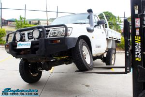 Front left view of this Nissan GU Patrol Ute being flexed from the front left tyre after fitment of a Superior 4-5 Inch Lift Kit with Superior Remote Reservoir Shocks & Superior Hybrid 5 Link Radius Arms